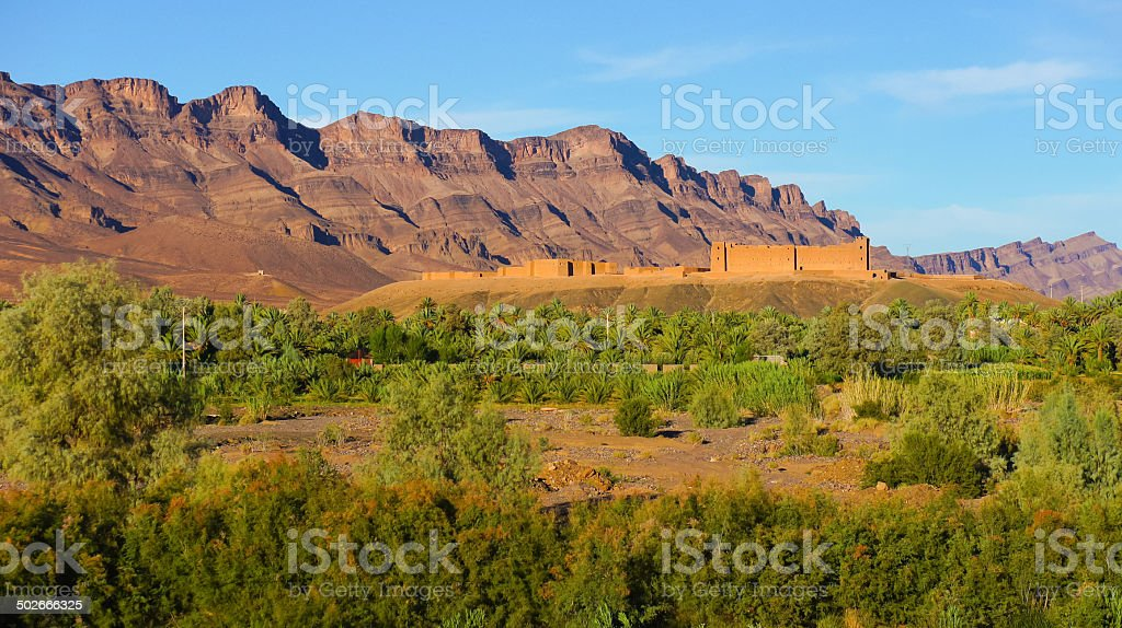 Vall��e du Dr��a, Oasis Palm Trees in Morocco stock photo