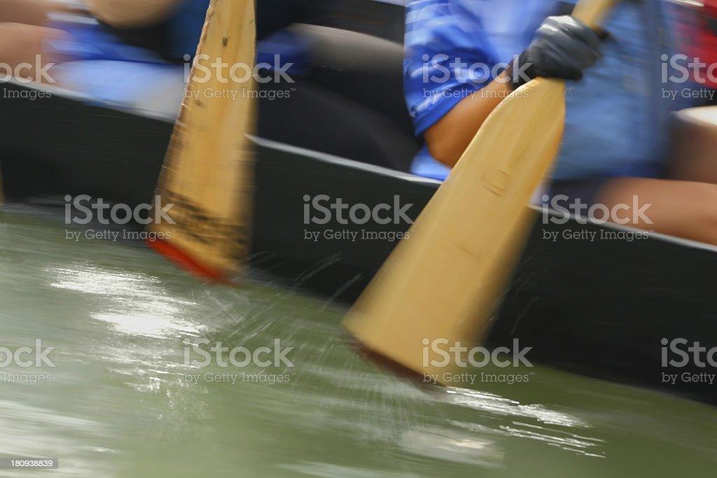 Dragon Boat Paddlers royalty-free stock photo