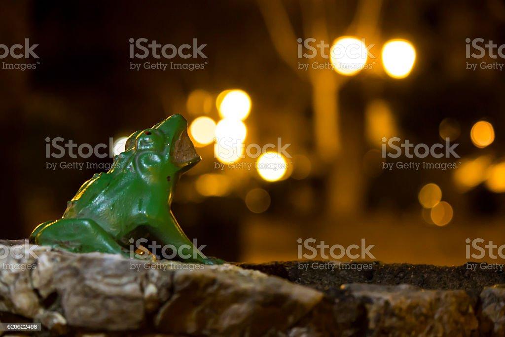 Dragon frog stock photo