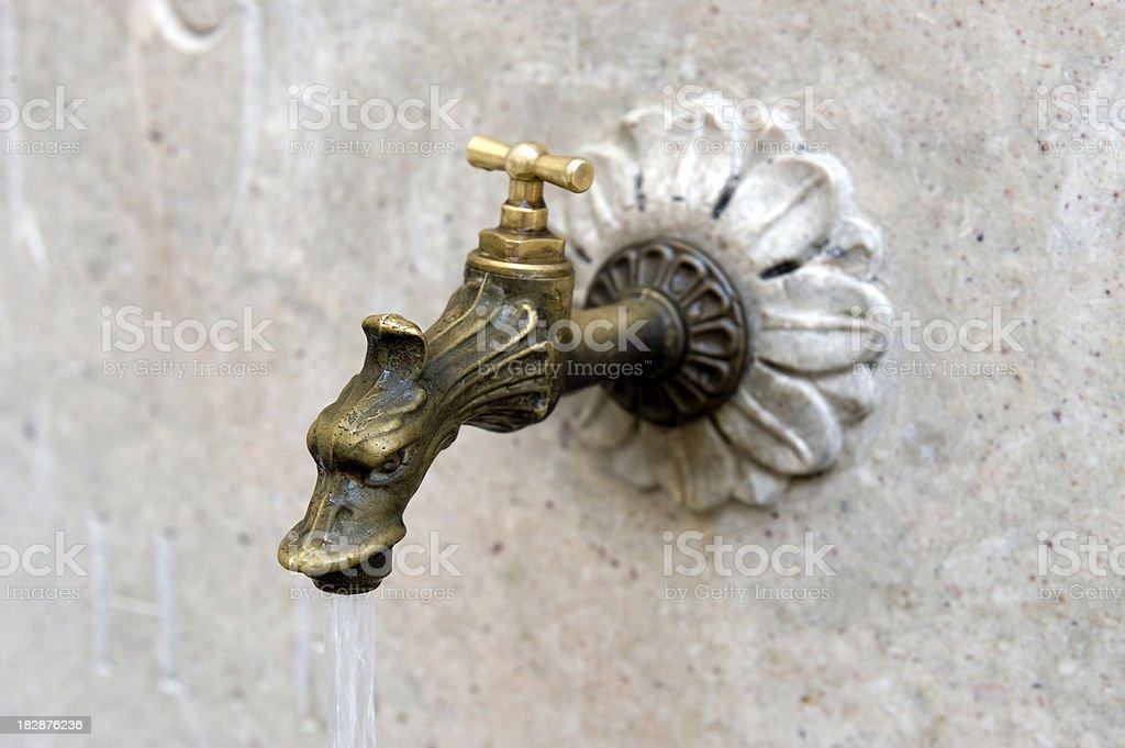 Dragon tap royalty-free stock photo
