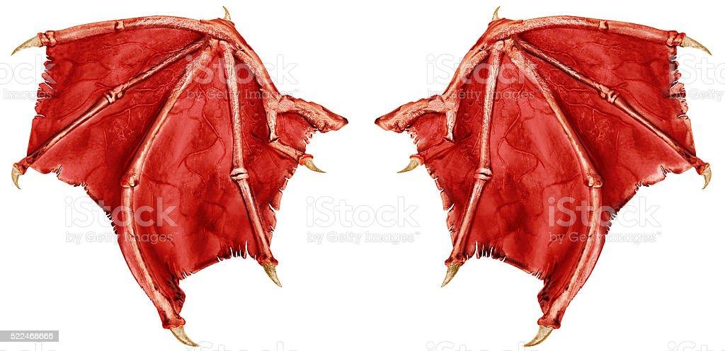 Dragon wings stock photo