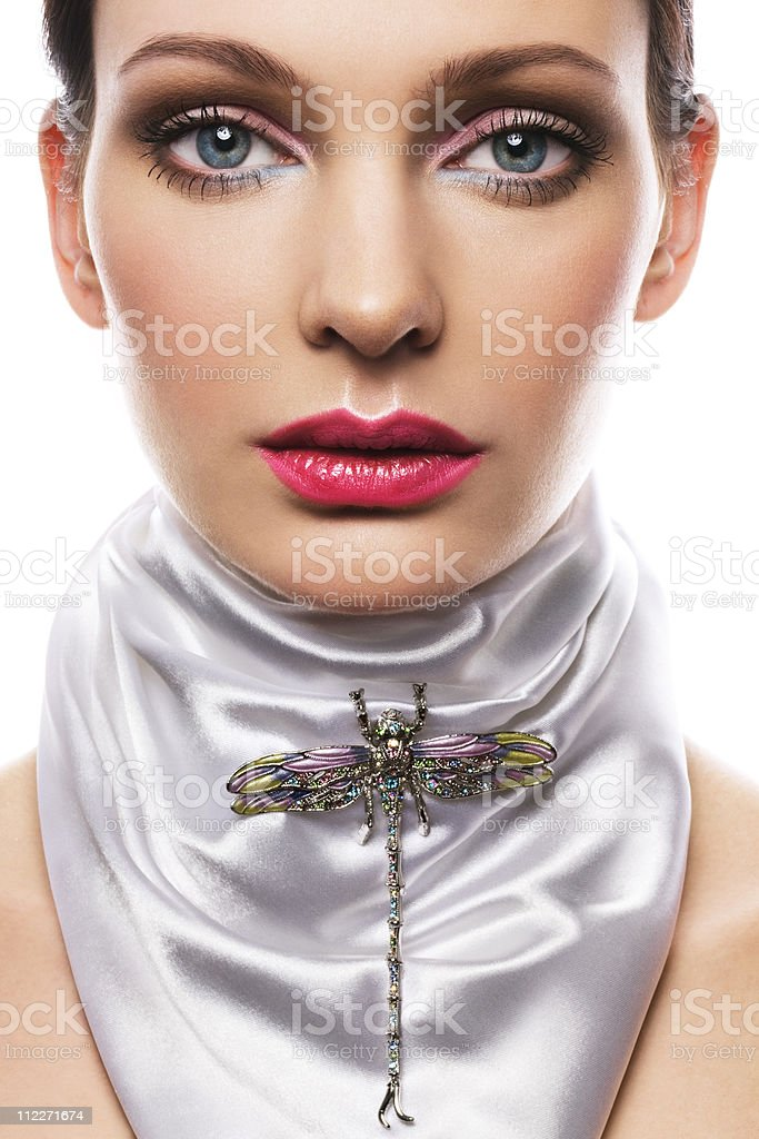 dragonfly brooch royalty-free stock photo