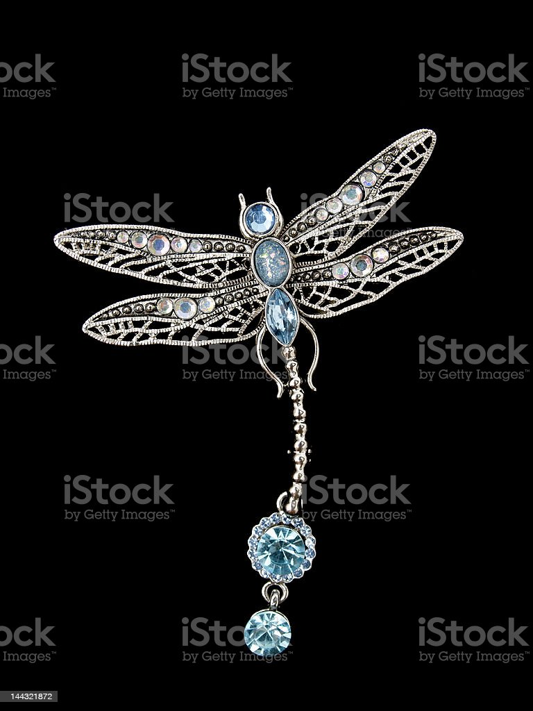 dragonfly jewelry stock photo