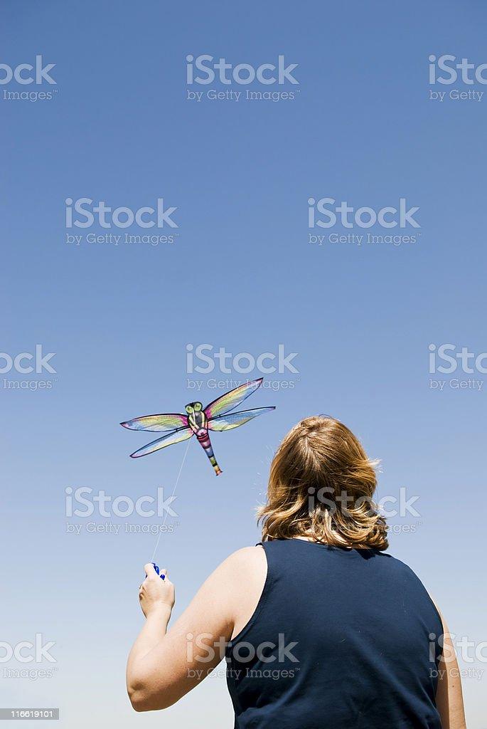 Libelle Drachensteigen Lizenzfreies stock-foto
