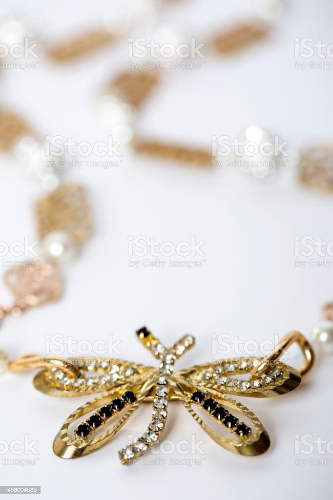 Dragonfly necklace royalty-free stock photo
