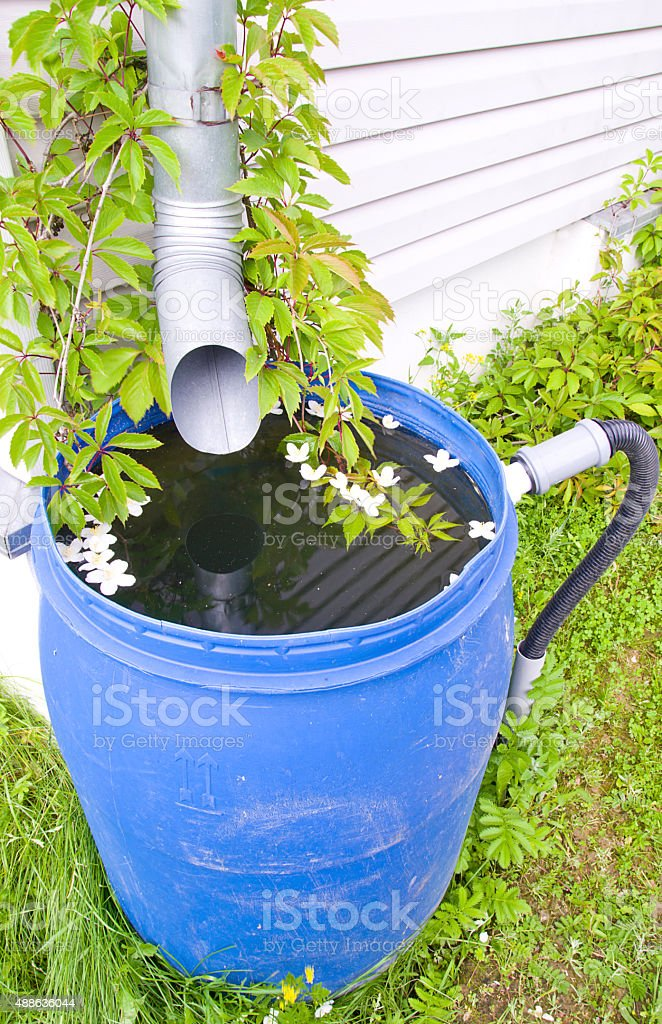 drain for rain water in a plastic barrel in a country house stock photo