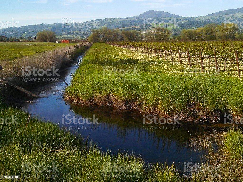Drainage and Irrigation Canal Alexander Valley Healdsburg California stock photo