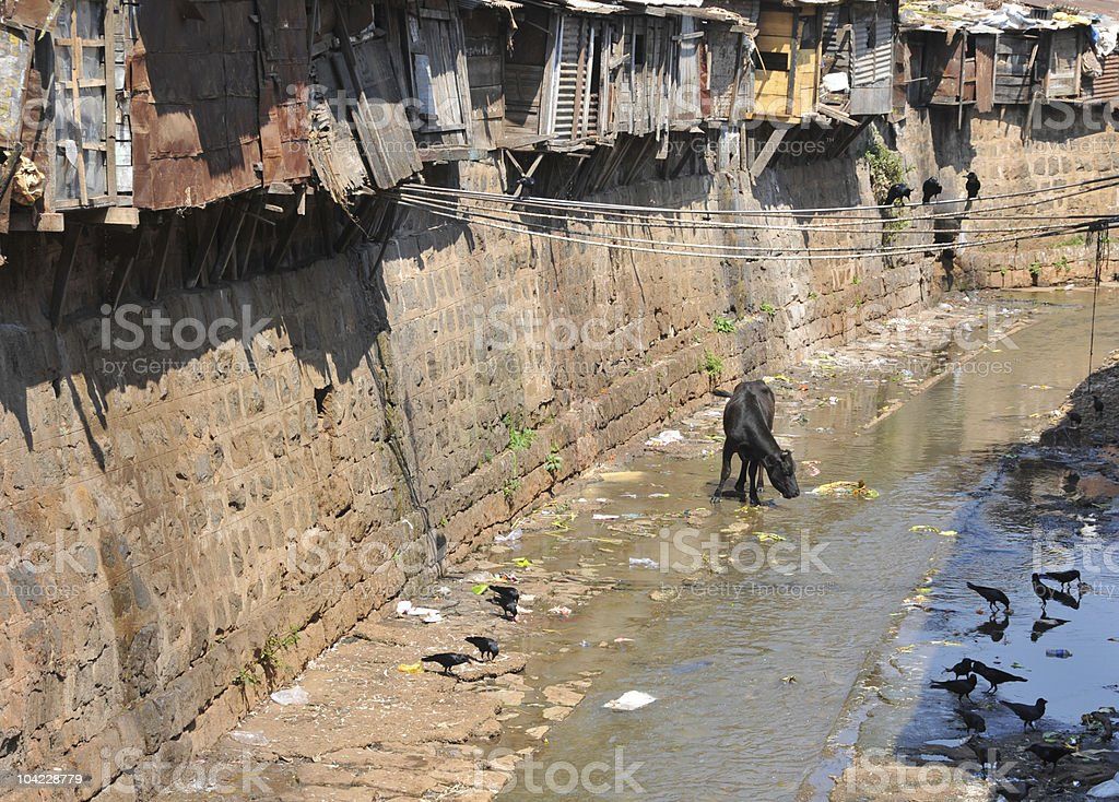 Drainage canal  in India royalty-free stock photo