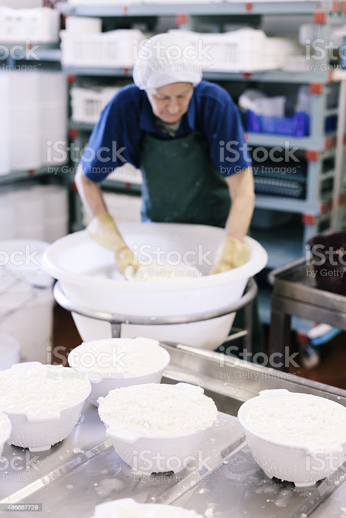 Draining the curds stock photo