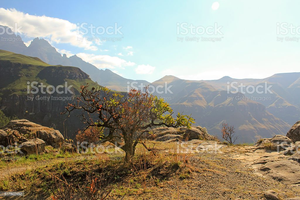 Drakensberg Dragon mountains landscape in South Africa stock photo