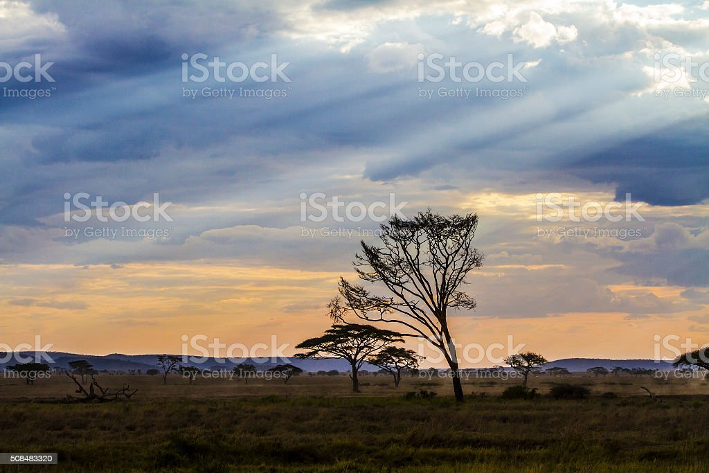Dramatic african landscape stock photo