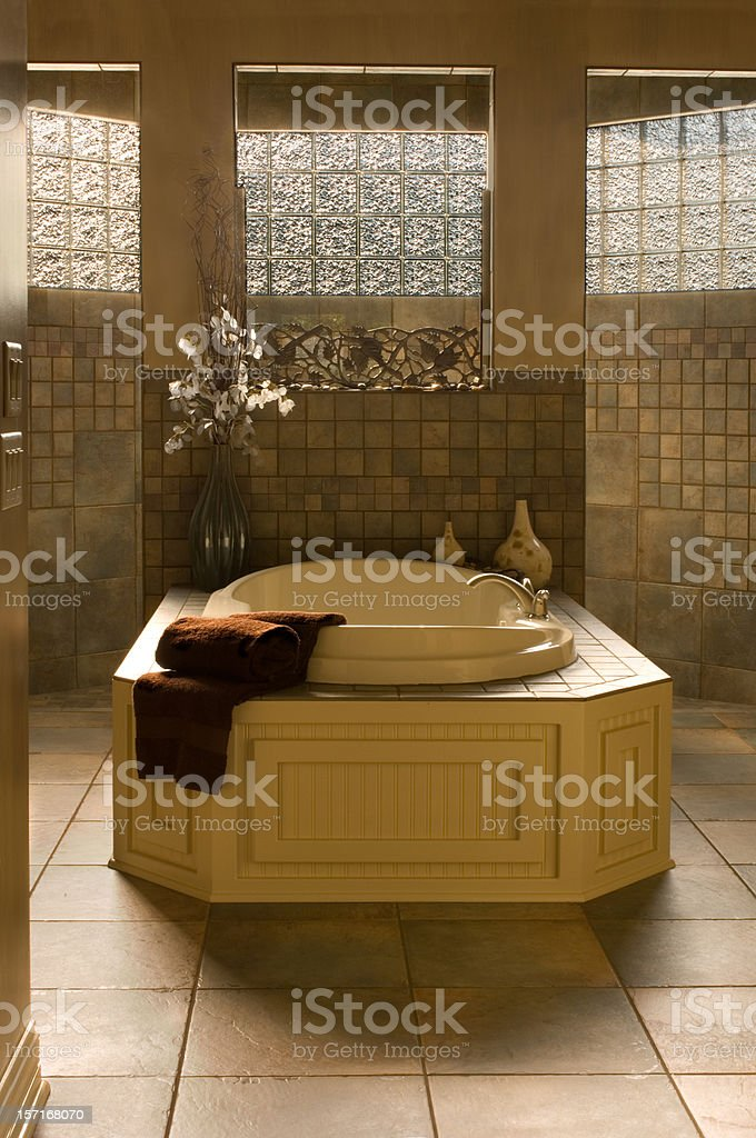 Dramatic Bathroom with Jacuzzi royalty-free stock photo