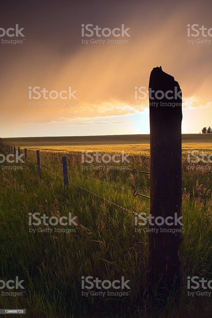 Dramatic Fenceline royalty-free stock photo