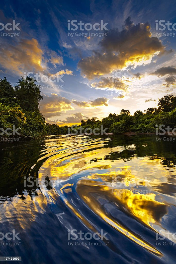Dramatic landscape on a river in the amazon state Venezuela royalty-free stock photo