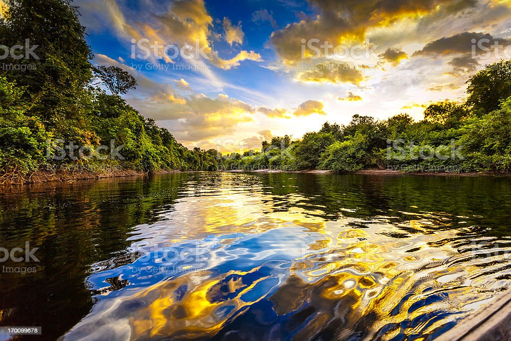Dramatic landscape on a river in the amazon state Venezuela stock photo