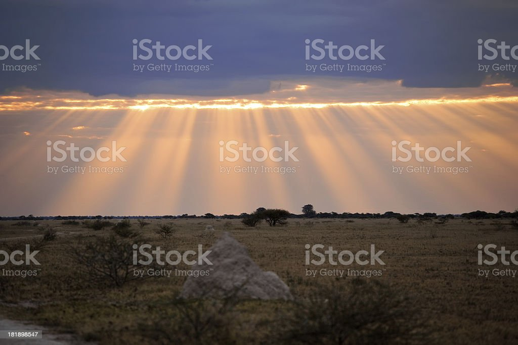 Dramatic Landscape stock photo
