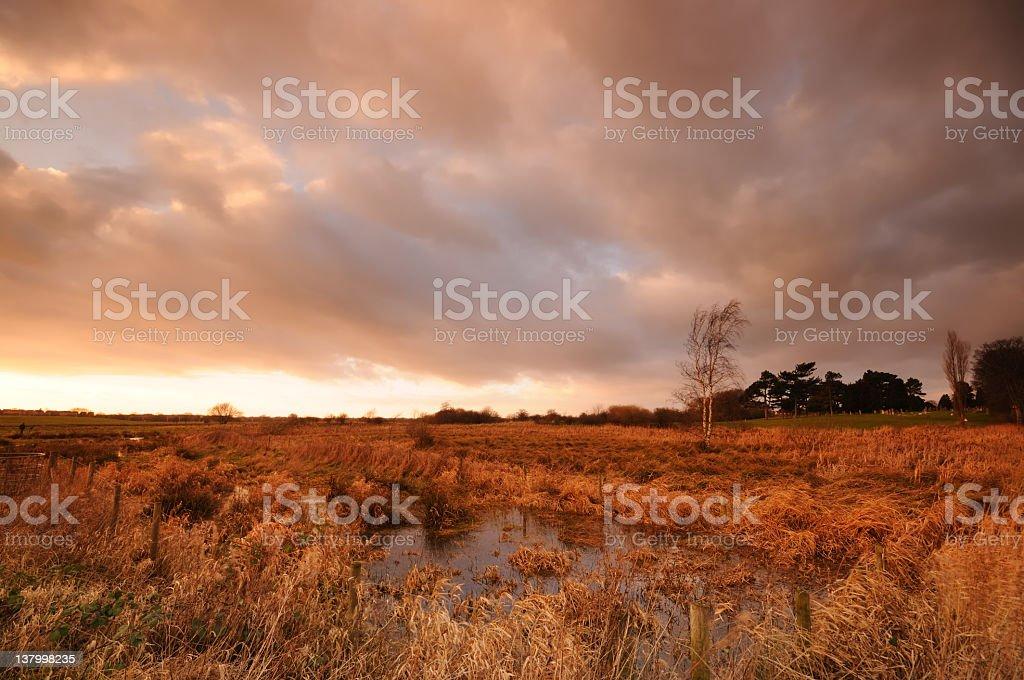 Dramatic Marshland Sunset royalty-free stock photo