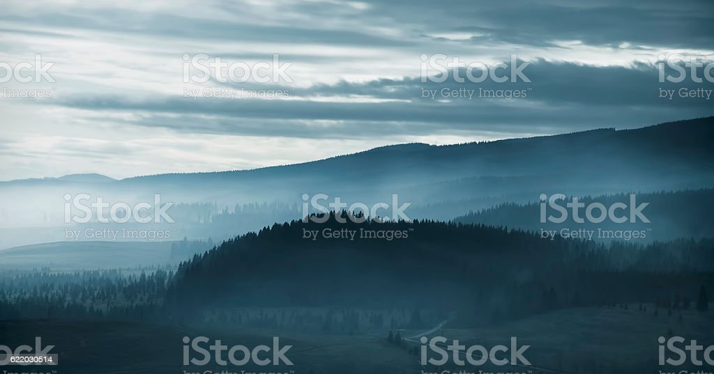 Dramatic misty mountain forest at dawn stock photo