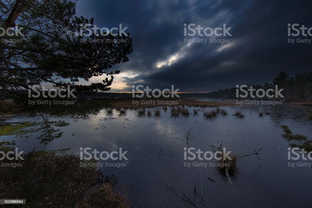 Dramatic moor stock photo