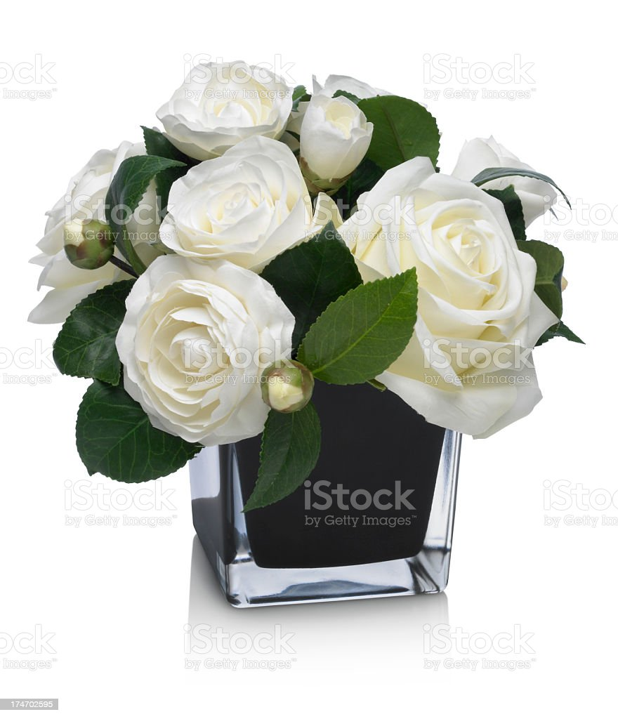 Dramatic Rose and Camellia bouquet on white background royalty-free stock photo