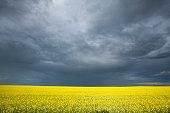 Dramatic Skies Over Saskatchewan