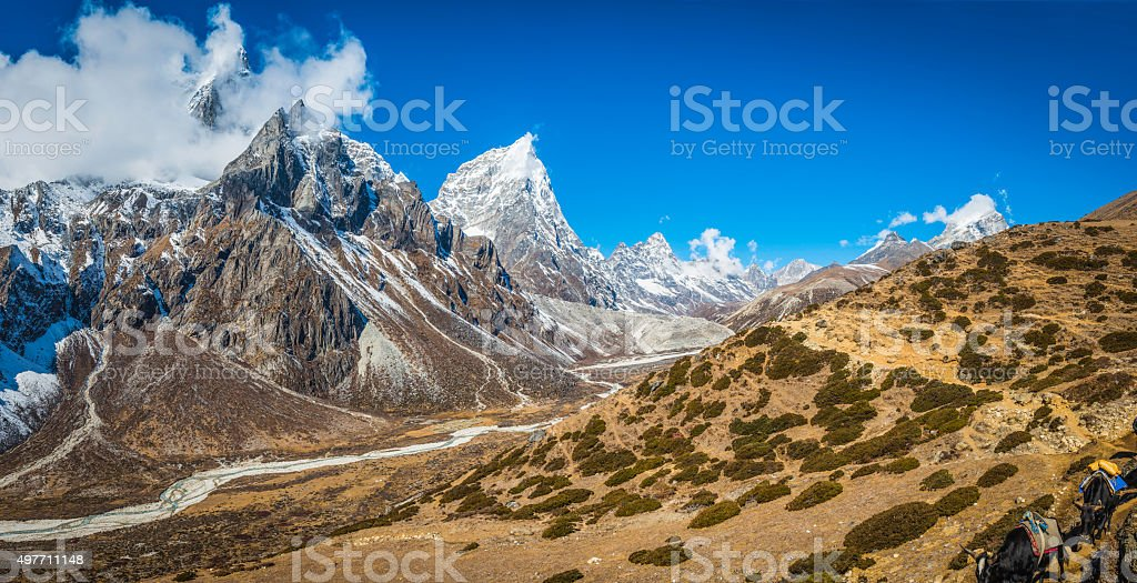 Dramatic snowy peaks panorama overlooking Himalaya mountain trail yaks Nepal stock photo