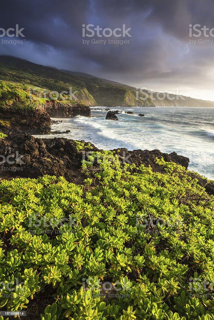 Dramatic Southeast Maui Coastline stock photo