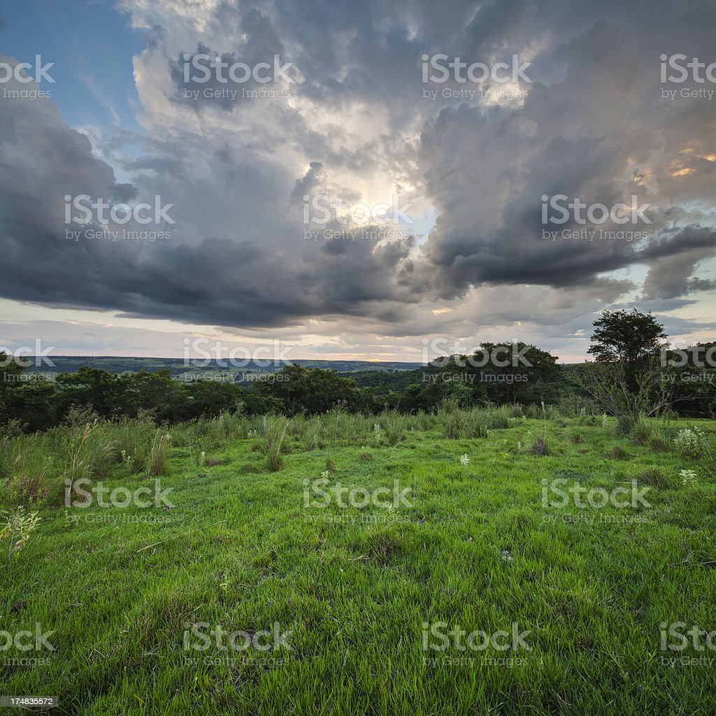 dramatic sunset over forest open field royalty-free stock photo