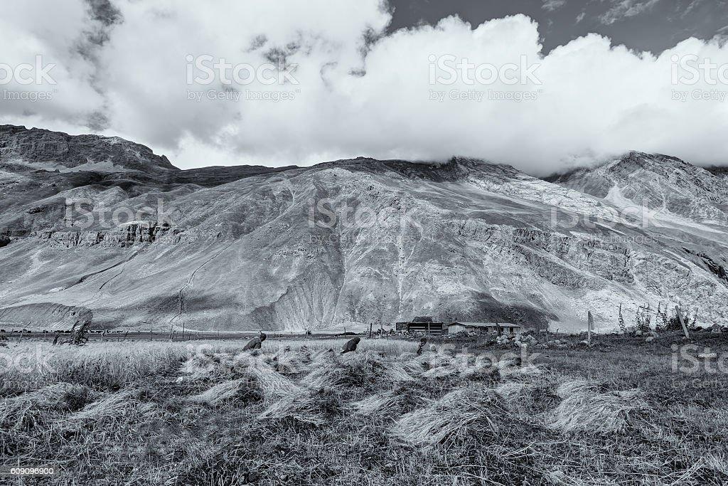 Drass village, Kargil, Ladakh, Jammu and Kashmir, India stock photo
