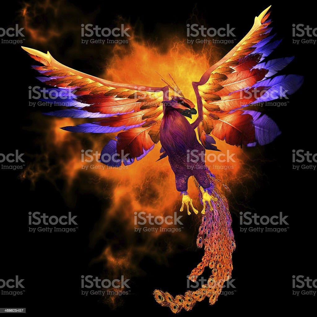 Drawing of fiery Phoenix in flight stock photo