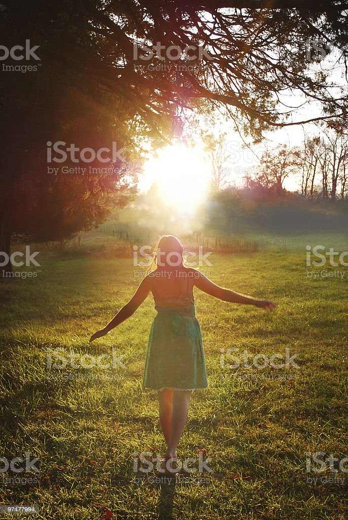 Drawn to Light royalty-free stock photo