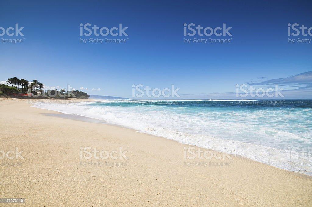 Dream Beach Hawaii stock photo
