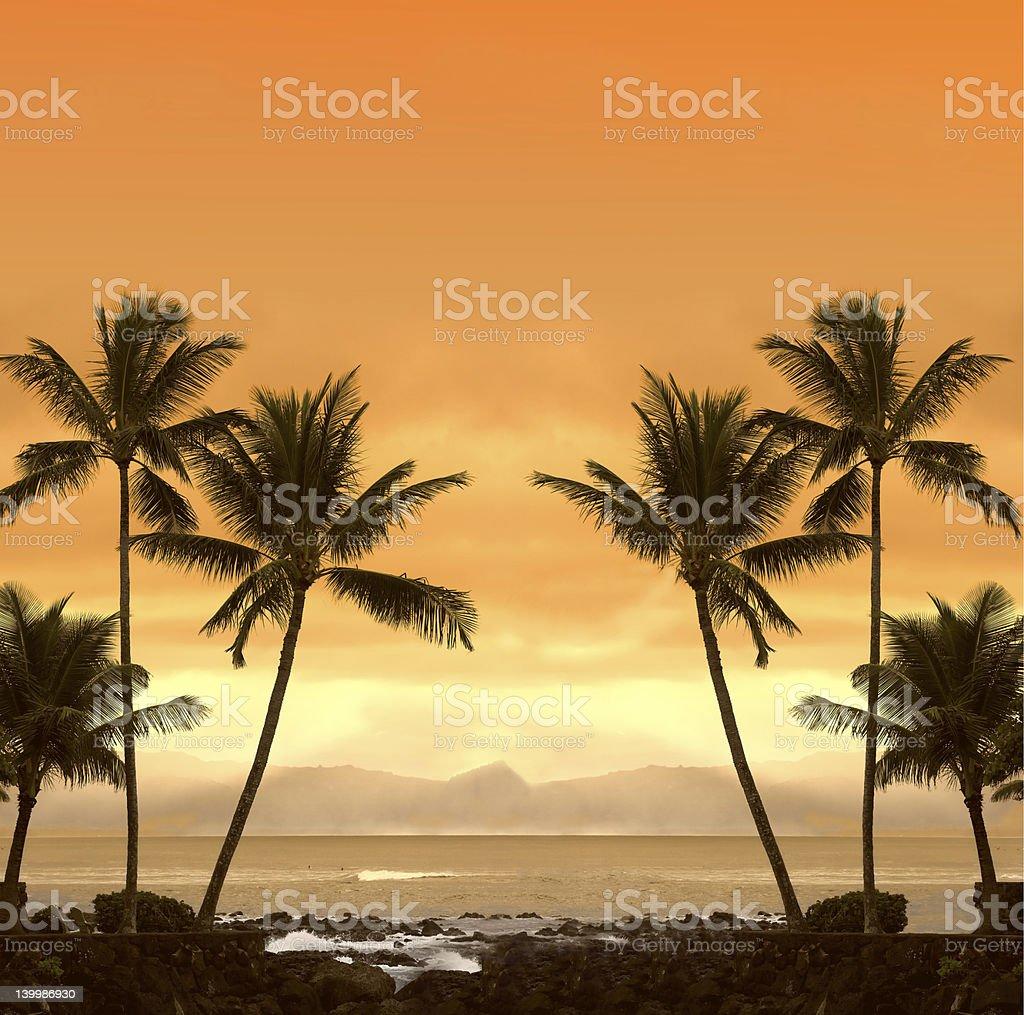 Dream beach royalty-free stock photo