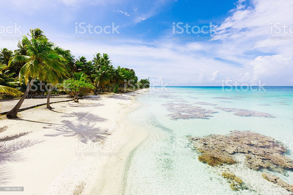 Dream Beach under Palm Trees Perfect Hideaway Fakarava French Polynesia royalty-free stock photo