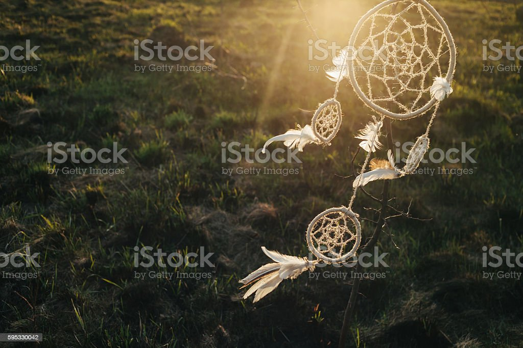 dream catcher hanging from a tree in a field at sunset stock photo