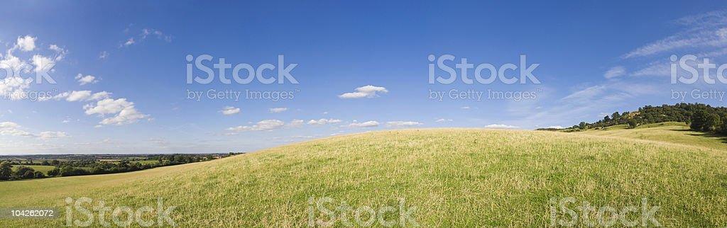 Dream field royalty-free stock photo