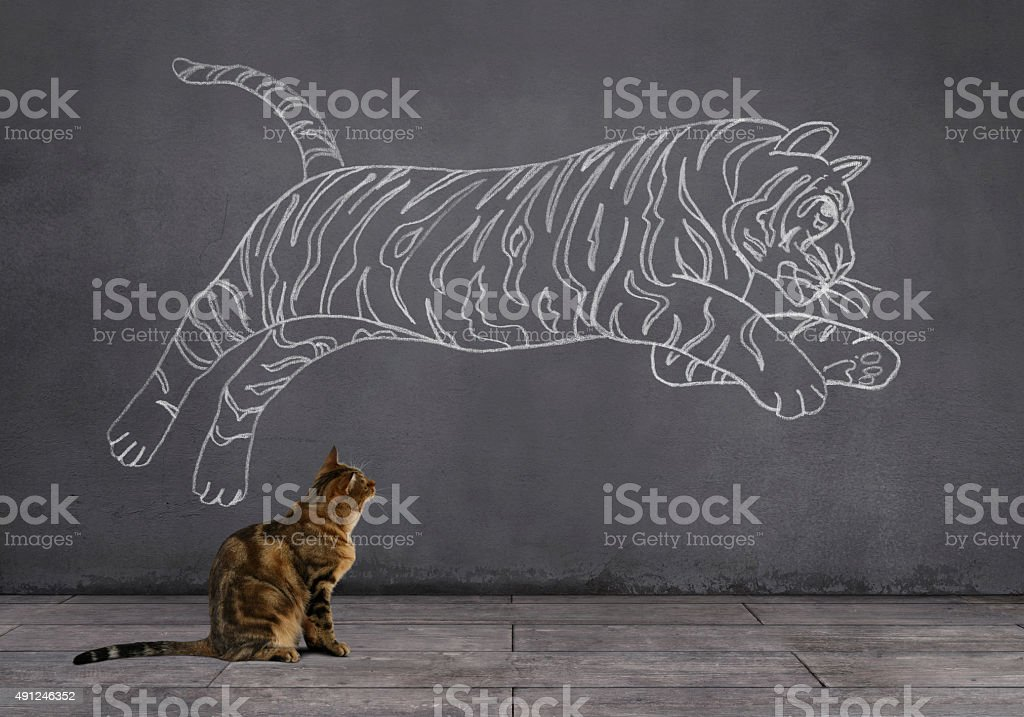 A tabby cat sitting on wooden floor and looking at the running tiger...