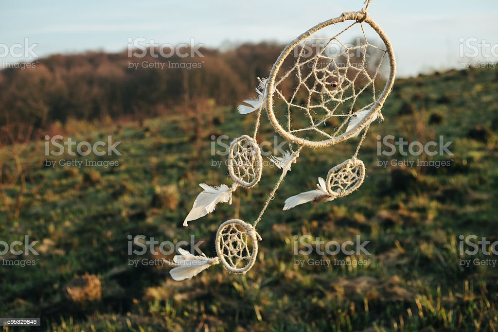 dreamcatcher hanging from a tree in a field at sunset stock photo