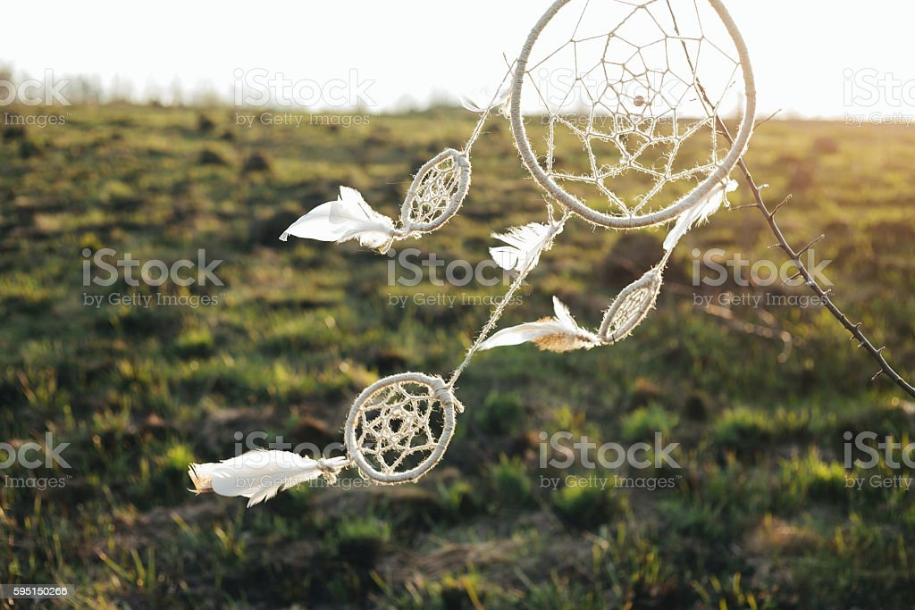 dreamcatcher hanging from a tree stock photo