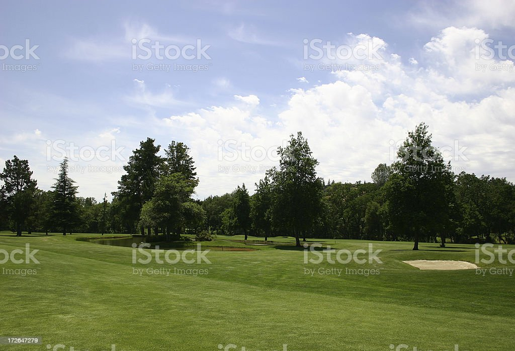Dreaming Of Golf royalty-free stock photo