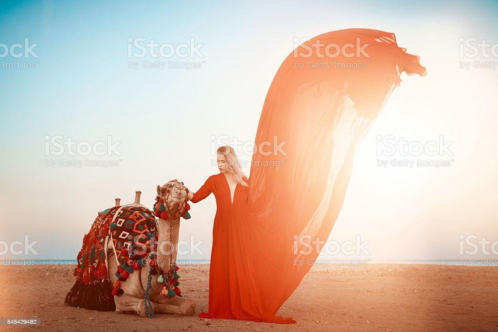 dreams in Egypt stock photo