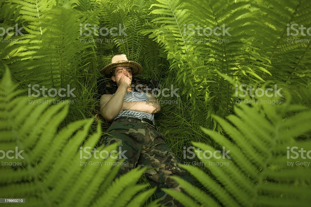 dreams in tropical forest royalty-free stock photo