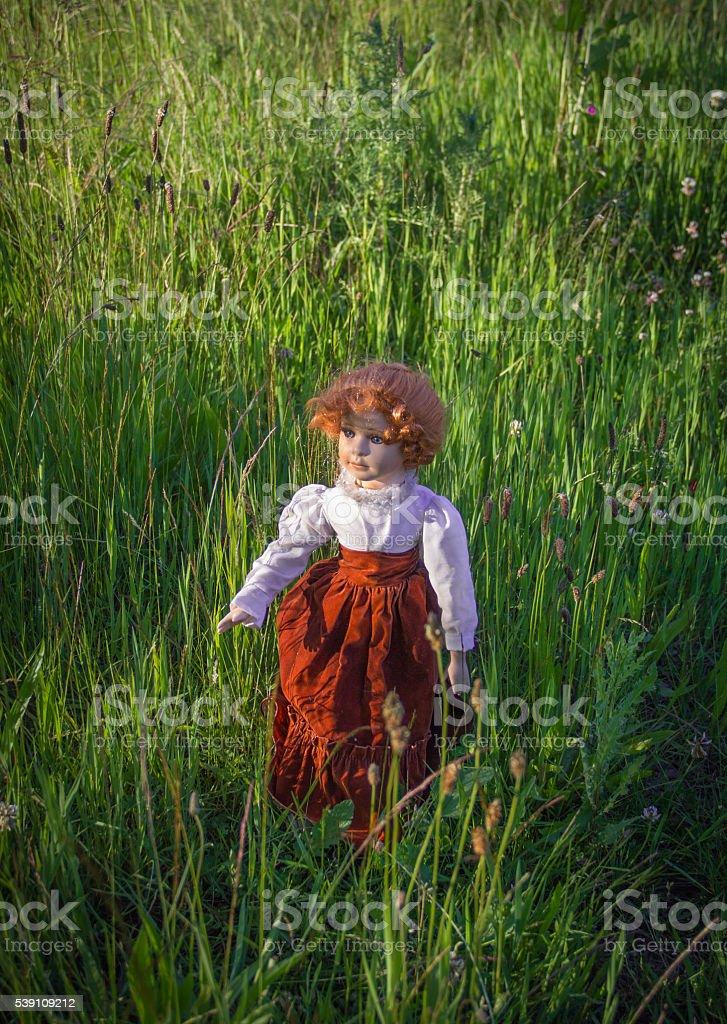 Dreamy Doll is walking in a meadow stock photo