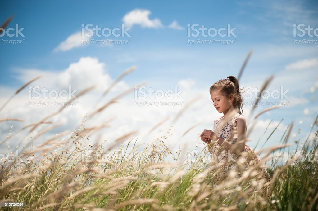 Dreamy handsome young girl in a beautiful dress among the fields of rye against the beautiful sky stock photo