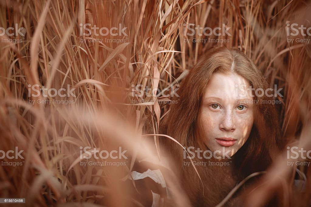 Dreamy portrait of ginger hair girl on the field stock photo