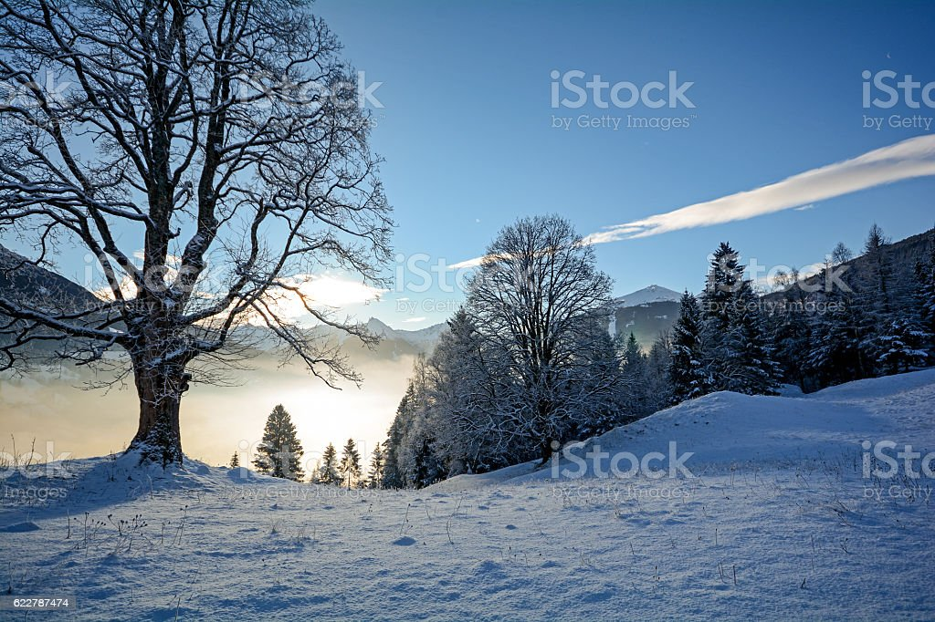 Dreamy winter landscape in Austrian Alps near Salzburg, Austria Europe stock photo