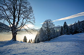 Dreamy winter landscape in Austrian Alps near Salzburg, Austria Europe