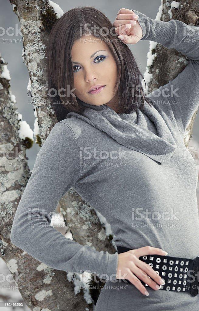 Dreamy Winter Portrait (XXXL) royalty-free stock photo