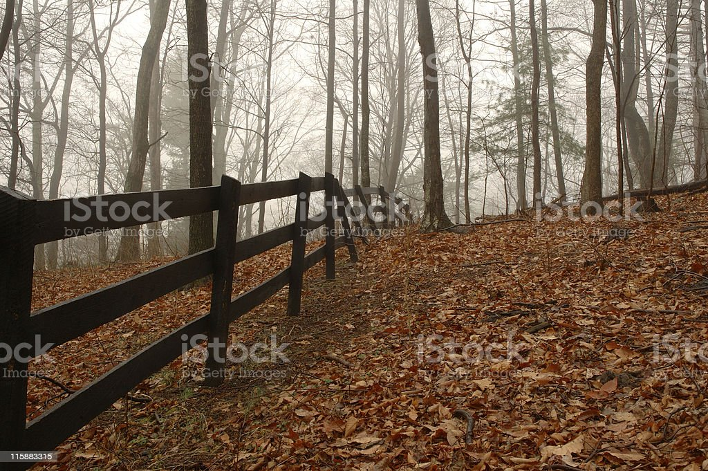 Dreary Autumn Day royalty-free stock photo