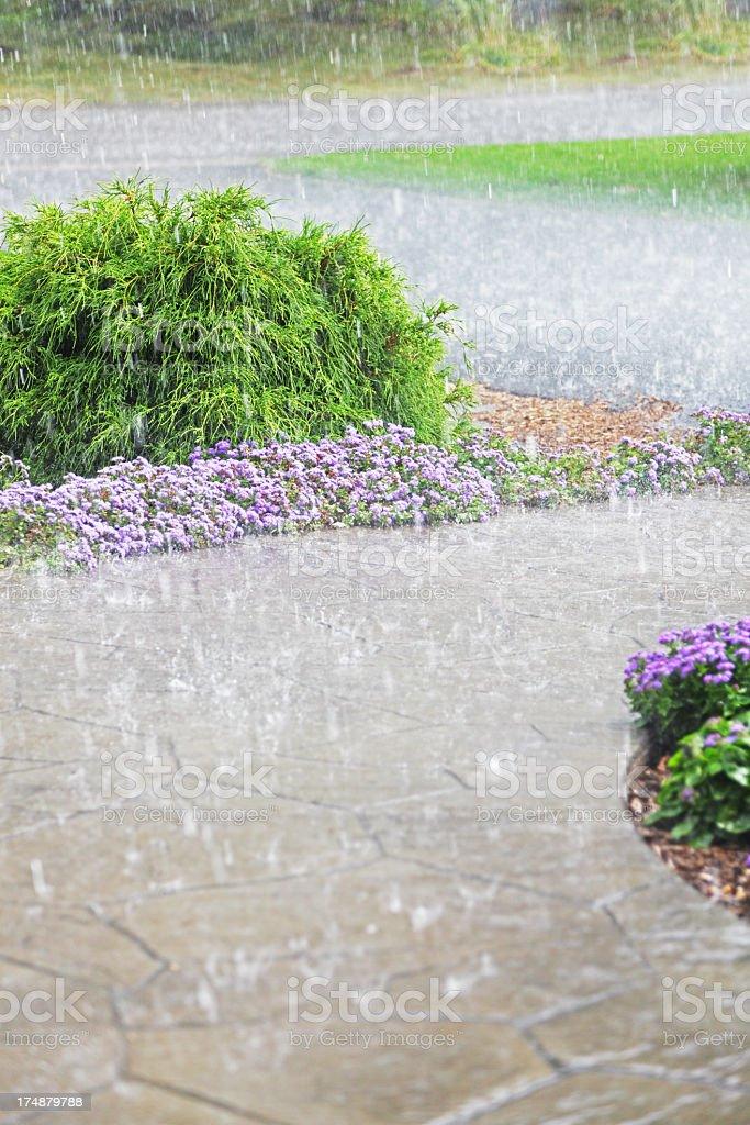 Drenching Suburban Rain Downpour stock photo